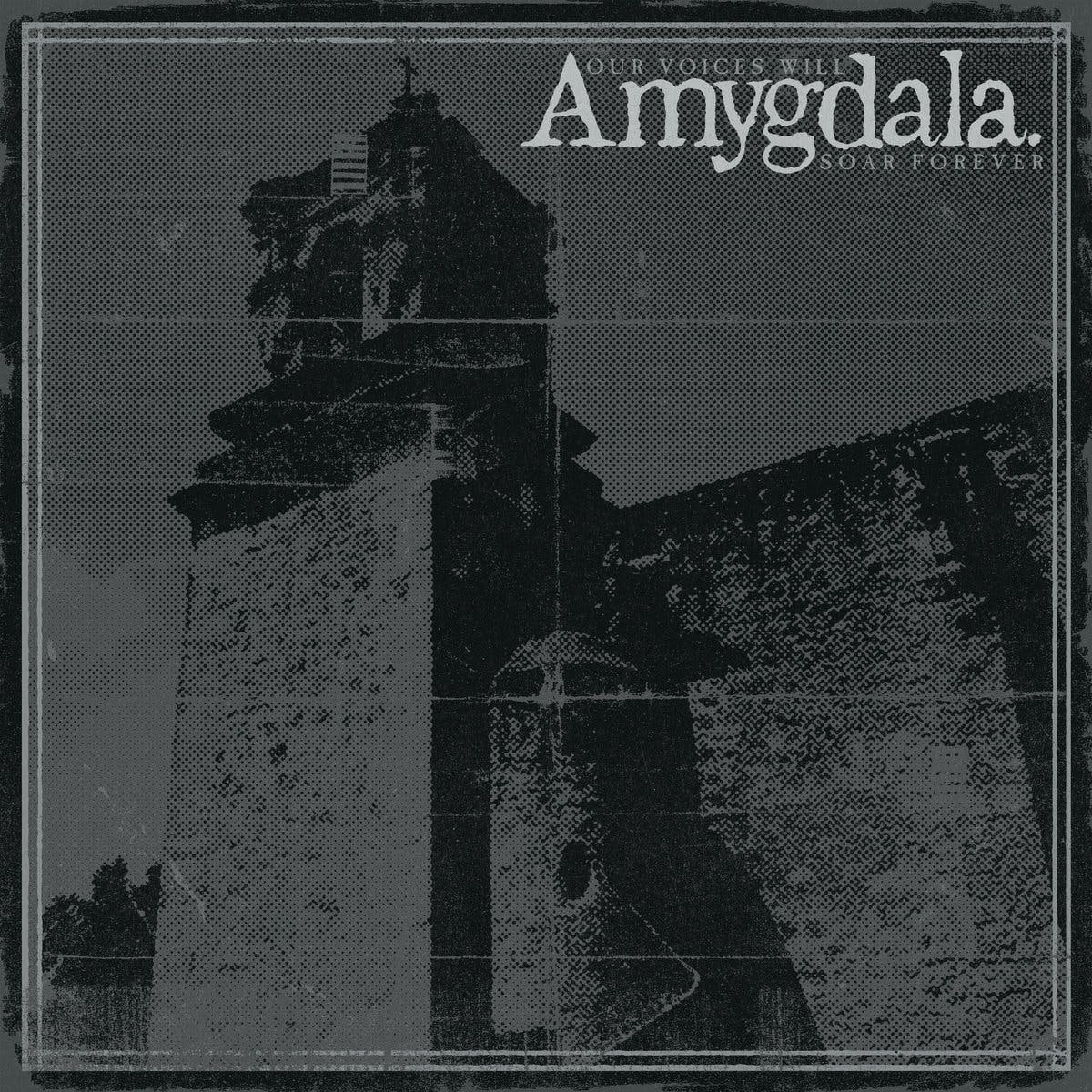 Amygdala Our Voices Will Soar Forever