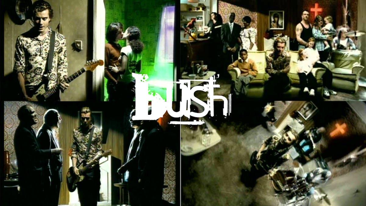 A Deep Dive Into Bush's Swallowed Video