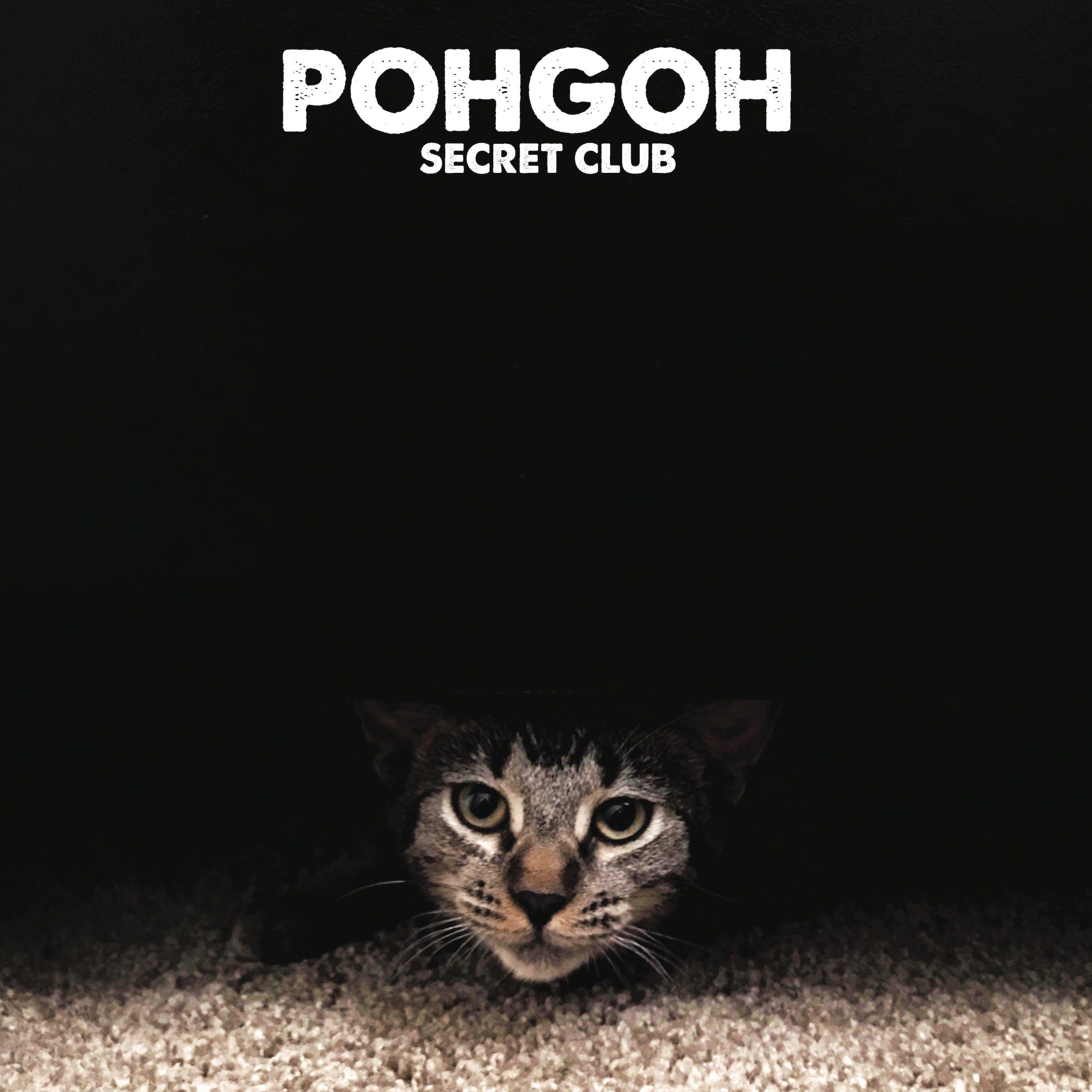 Pohgoh Secret Club Cover