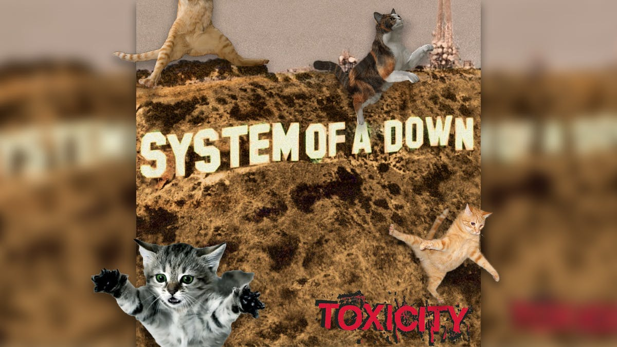 Cats Moshing To System Of A Down's Chop Suey! Will Make Your Stupid Day Better
