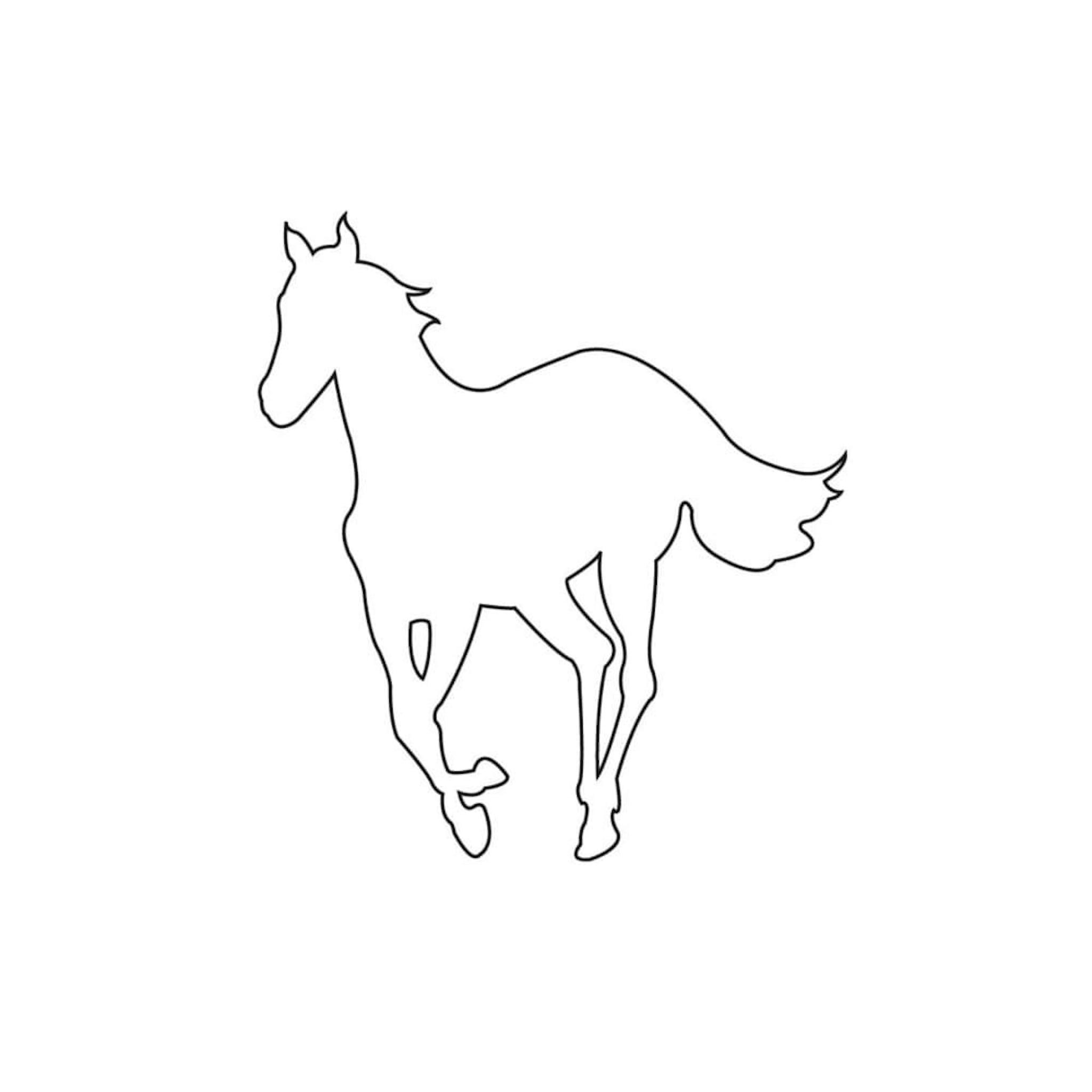 White Ponycover